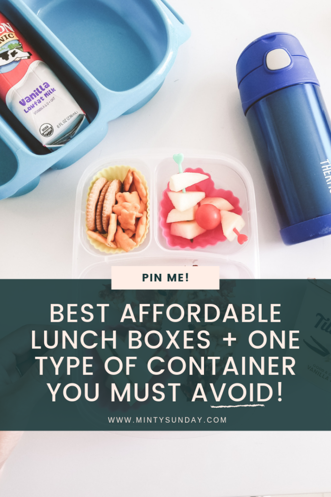 best school lunch box container on a budget
